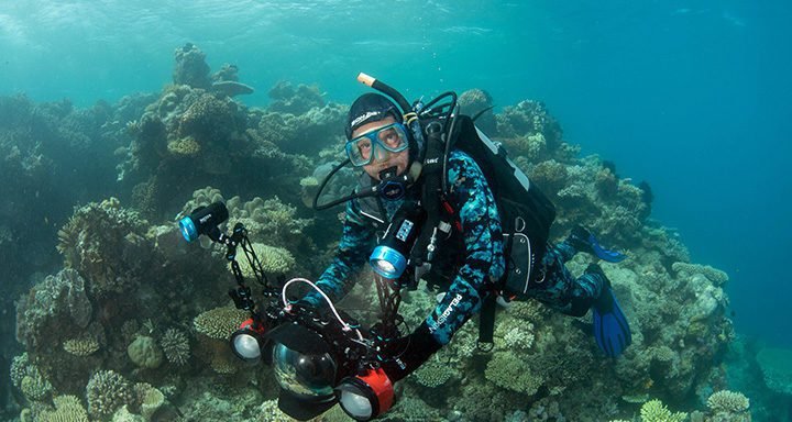 Front row seats for birth of new corals livestreamed from Reef
